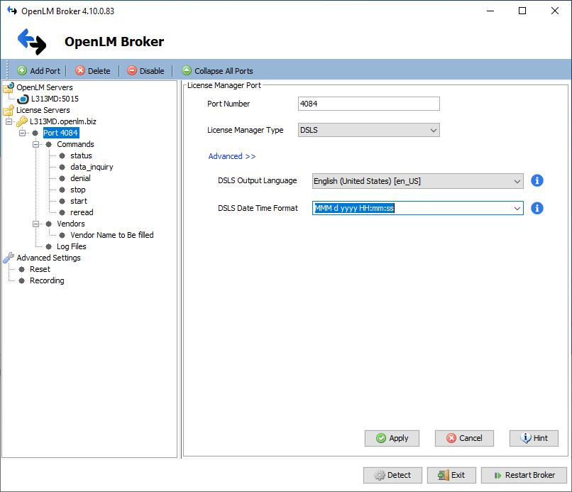 DSLS date format selection screen