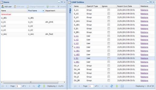 users in LDAP entities