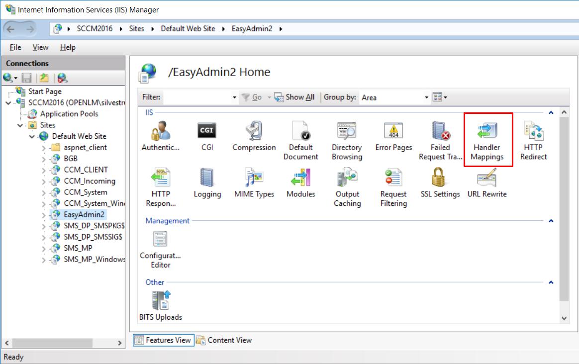 IIS Manager EasyAdmin Handler Mappings