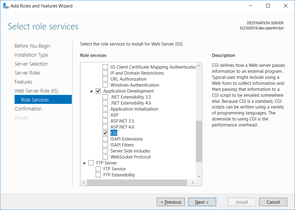 Selecting CGI role for configuring EasyAdmin with IIS 10 on Windows Server