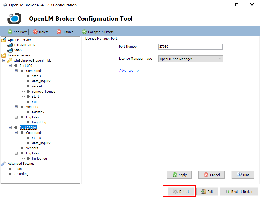 "The OpenLM Broker Configuration Tool and the ""Detect"" function."