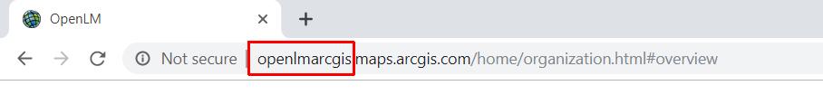 ArcGIS custom hostname URL for your organization